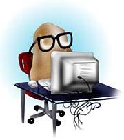 computer-potato